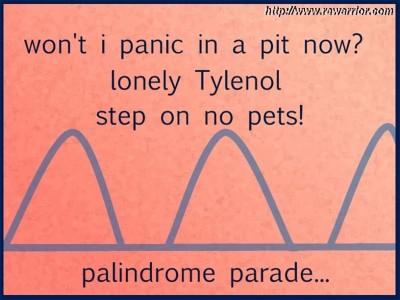 palindromic rheumatism palindrome examples