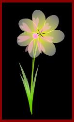 procreo flower