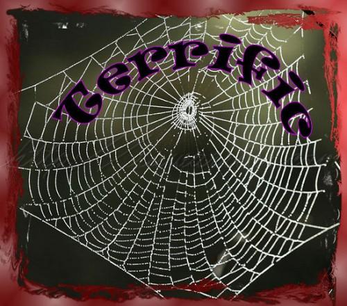 Terrific web