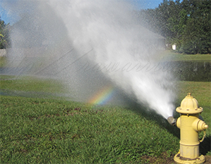 fire hydrant with rainbow