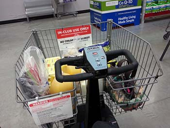 store electric riding cart